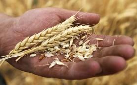 пошлины на экспорт зерна